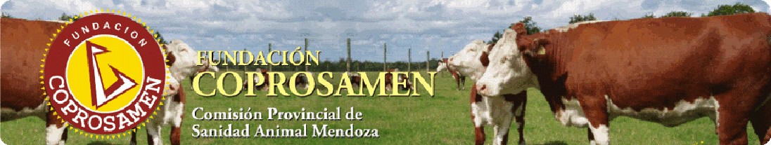 Fundación Coprosamen